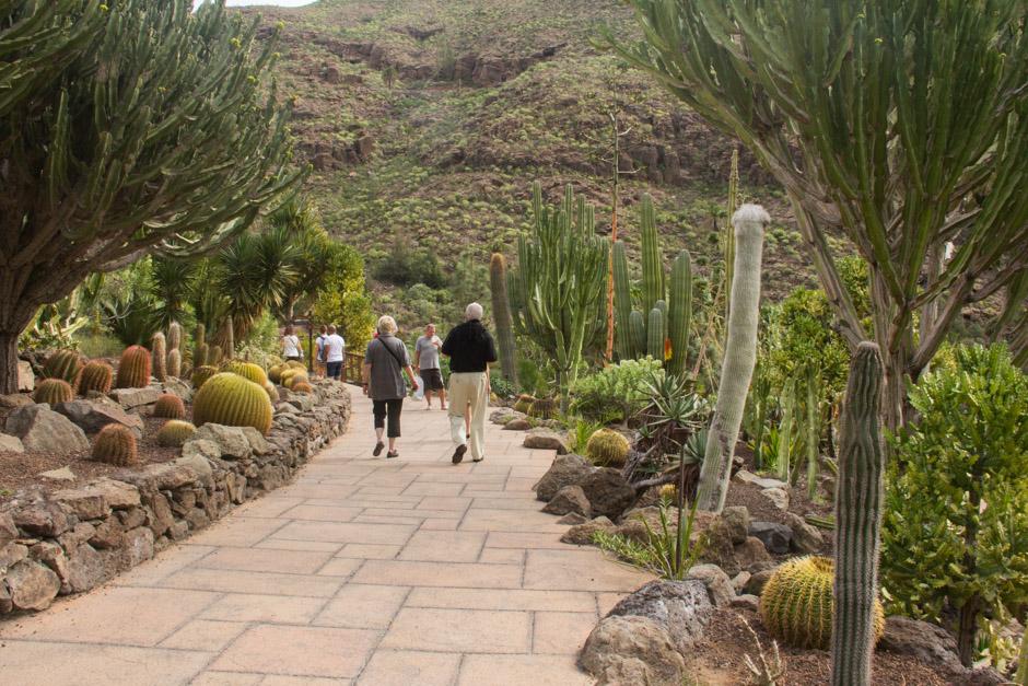 Cactus garden in Palmitos Park_Gran Canaria