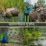 জলদাপাড়ার  দু'রাত্রি…(Holong Forest Bungalow, Jaldapara)